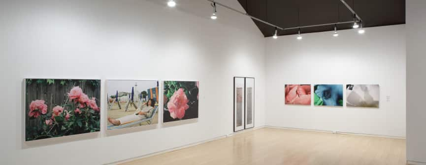 Barbara Astman, Dyan Marie, Lori Newdick, Sara Angelucci, Sasha YungJu Lee, Suzy Lake, Flowers and Photography