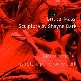 Critical Mass: Sculpture by Shayne Dark