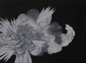 Celia Neubauer: Affect of Gravity