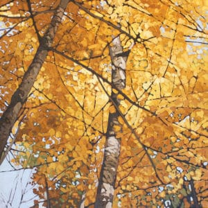 Selections: 34th Annual Kawartha Autumn Studio Tour