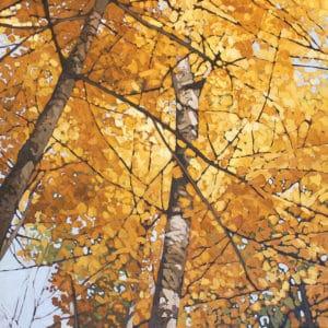 Selections: 34th Annual Kawartha Autumn Studio Tour