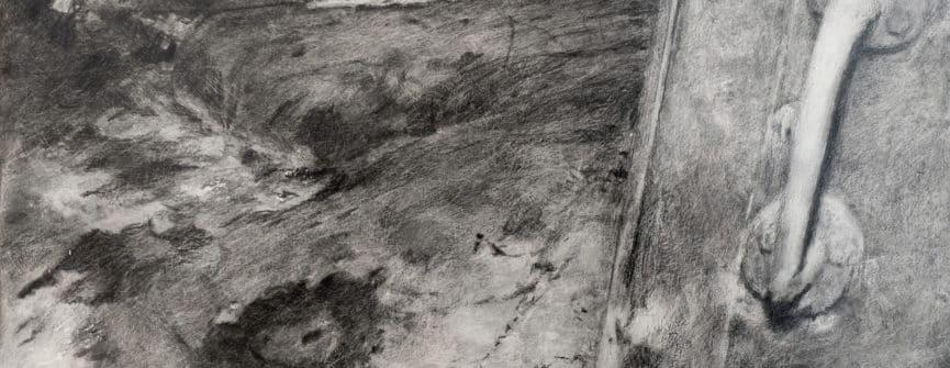 Sasha Opeiko, 217 (Elephant's Foot) series, 2015–2017, graphite on gessoed aluminum, 10