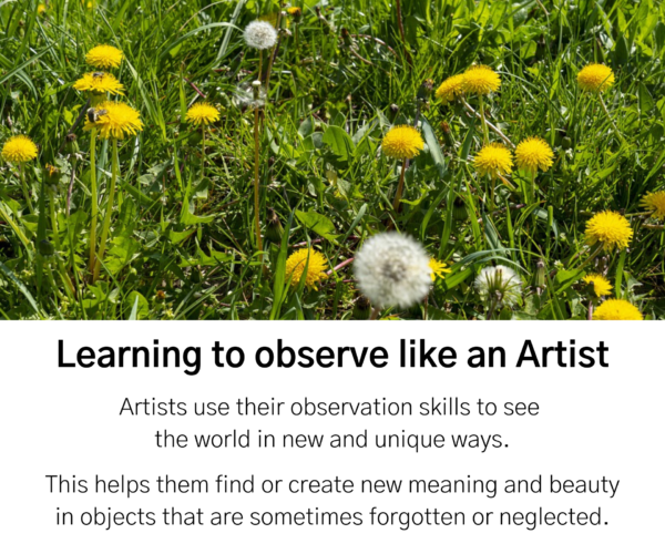 """Dandelion field. Text reads: """"Learning to observe like an Artist. Artists use their observation skills to see the world in new and unique ways. This helps them find or create new meaning and beauty in objects that are sometimes forgotten or neglected."""""""