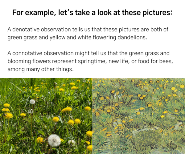 """Photograph and painting of a dandelion field. Text reads: """"For example, let's take a look at these pictures: A denotative observation tells us that these pictures are both of green grass and yellow and white flowering dandelions. A connotative observation might tell us that the green grass and blooming flowers represent springtime, new life, or food for bees, among many other things."""""""