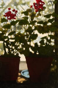 Silhouettes of geranium flowers in a window