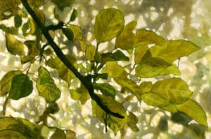 Peer Christensen, Crabapple Study, painting of crabapple tree