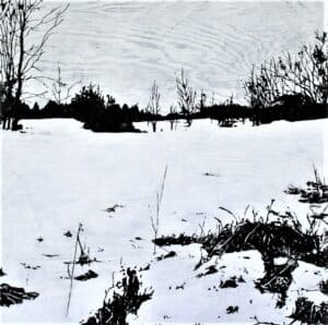 winter scene with grasses peeking through snow in foreground and trees along horizon