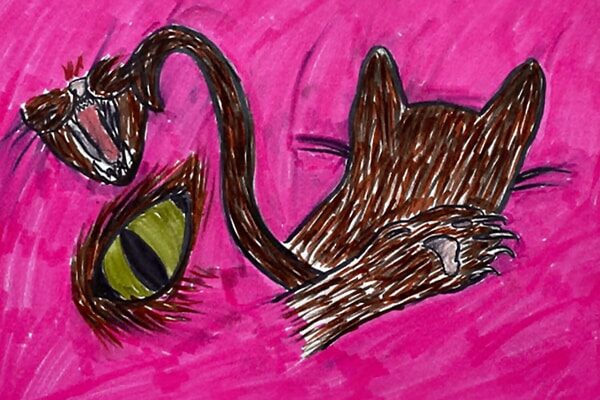 Marker drawing of multiple angles of a brown cat with a pink background