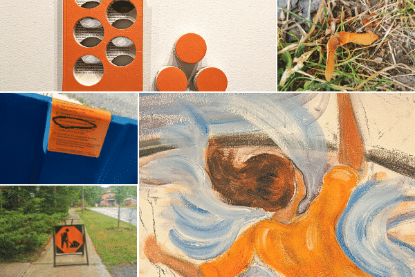 Grid with 5 images. Clockwise, from top-left corner: Orange book with holes five holes through it, with 3 circles next to it in a triangle orientation; maple seed on grass; painting of girl in orange shirt with blue waves around her; orange construction sign; orange notice on a blue bin.