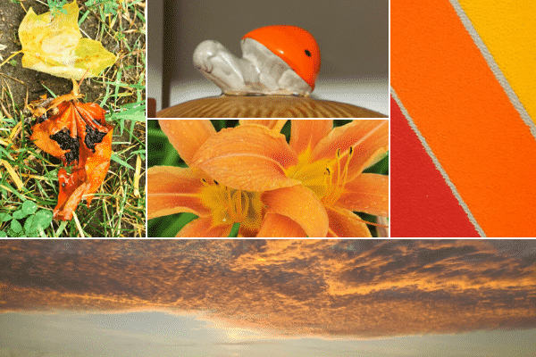Grid with 5 images. Clockwise, from top-left corner: a yellow leaf and an orange leaf in the grass; a ceramic snail with orange shell; three diagonal stripes (Yellow, Orange, and Red); sunset. Middle image of orange flowers